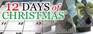 12 days 9