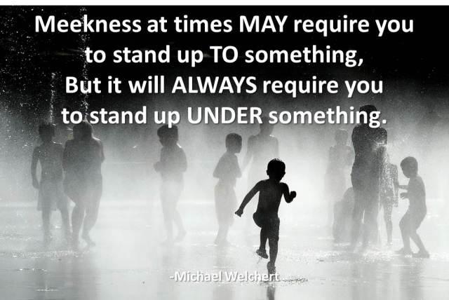 meekness-1